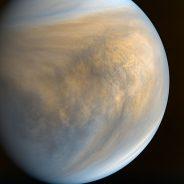 Ep. 578: Life on Venus?!?